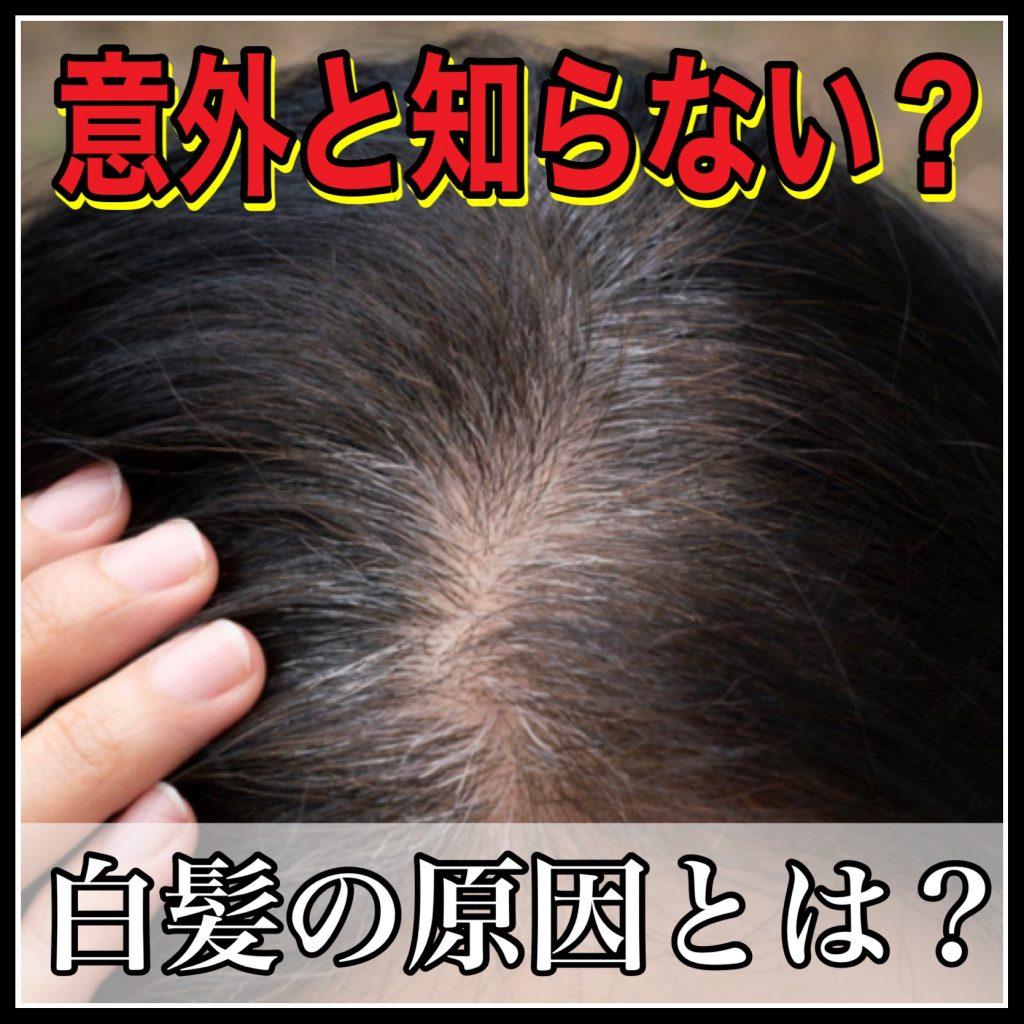 30~40代必見!白髪が生える8つの原因と美容師が教える業界初の白髪対策とは?