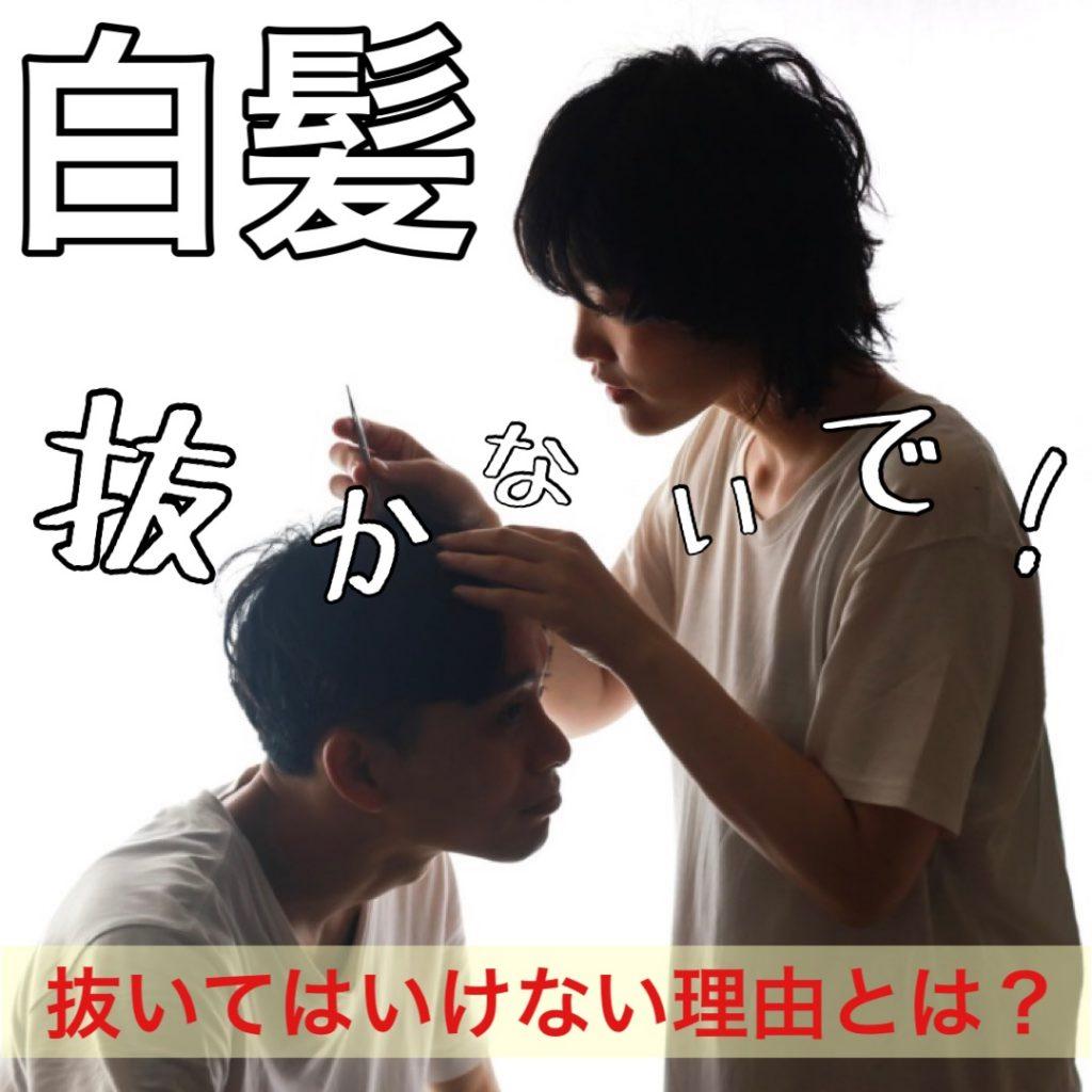 白髪を抜くのは絶対NG!美容師が真のデメリットを解説!抜くと増えるは嘘?ホント?